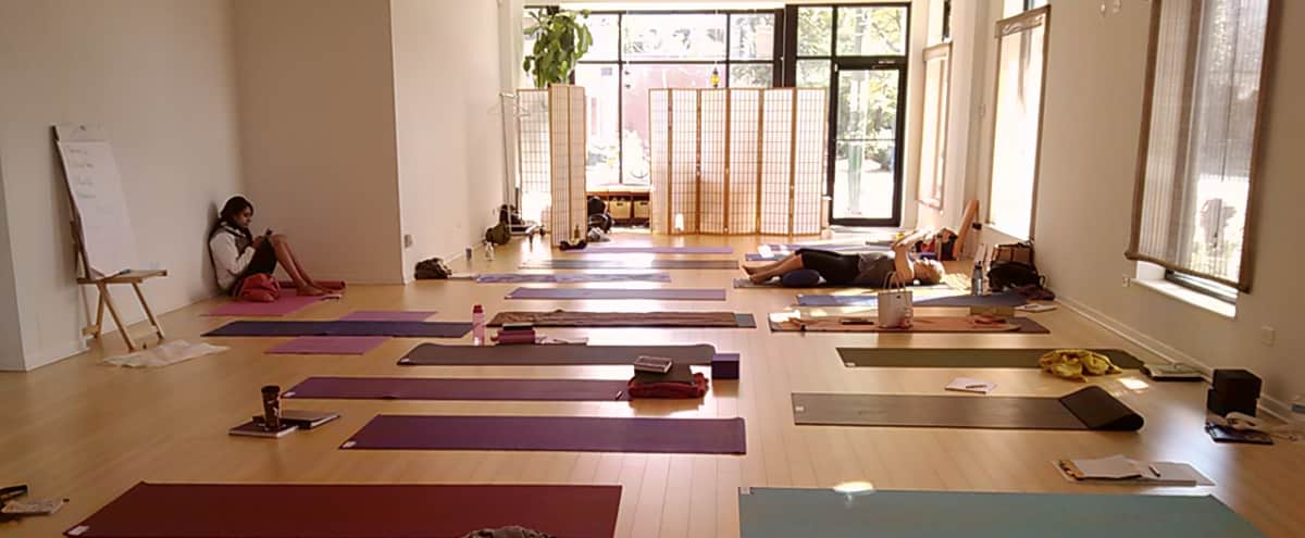 Sunlit Yoga Studio w/Mats. For Wellbeing. Gather. Teach. Practice. Here. in Chicago Hero Image in West Town, Chicago, IL