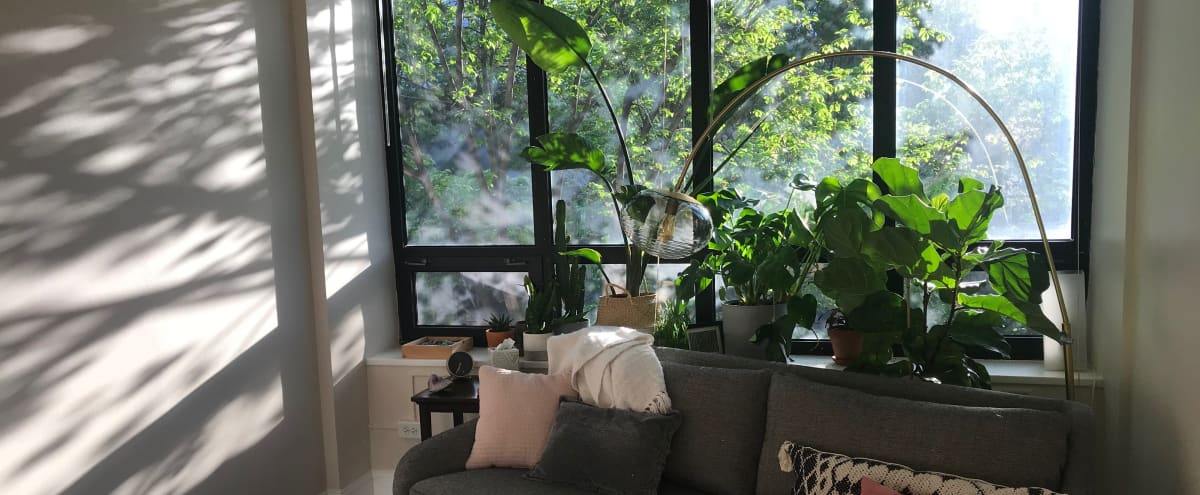 Causal Office with Large Windows and Plants in Oak Park Hero Image in undefined, Oak Park, IL