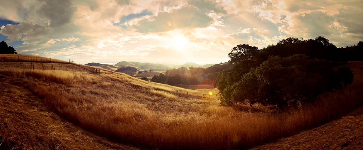 Huge Barn studio with Swiping View near San Francisco in Petaluma Hero Image in undefined, Petaluma, CA