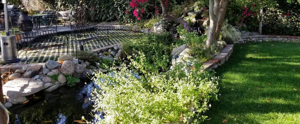Luscious Valley Garden Ranch House with Pond in North Hollywood Hero Image in Sun Valley, North Hollywood, CA