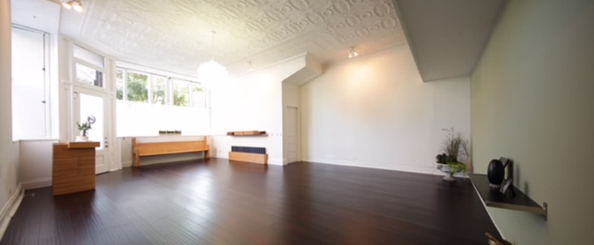 Calming Studio in Pilsen | Great for Natural Light Photoshoots in Chicago Hero Image in Pilsen, Chicago, IL