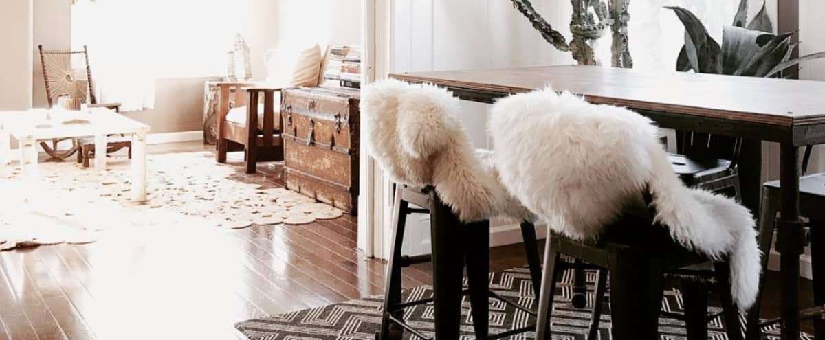 Light & Artistic Apartment with Designer Interiors, Photo +Video Shoots in Oakland Hero Image in East Lake, Oakland, CA