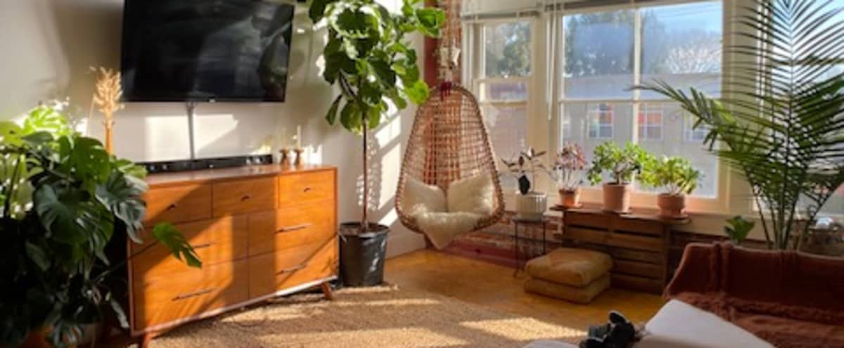 Industrial Loft Apartment with Tons of Light and Plants! in Emeryville Hero Image in Longfellow, Emeryville, CA