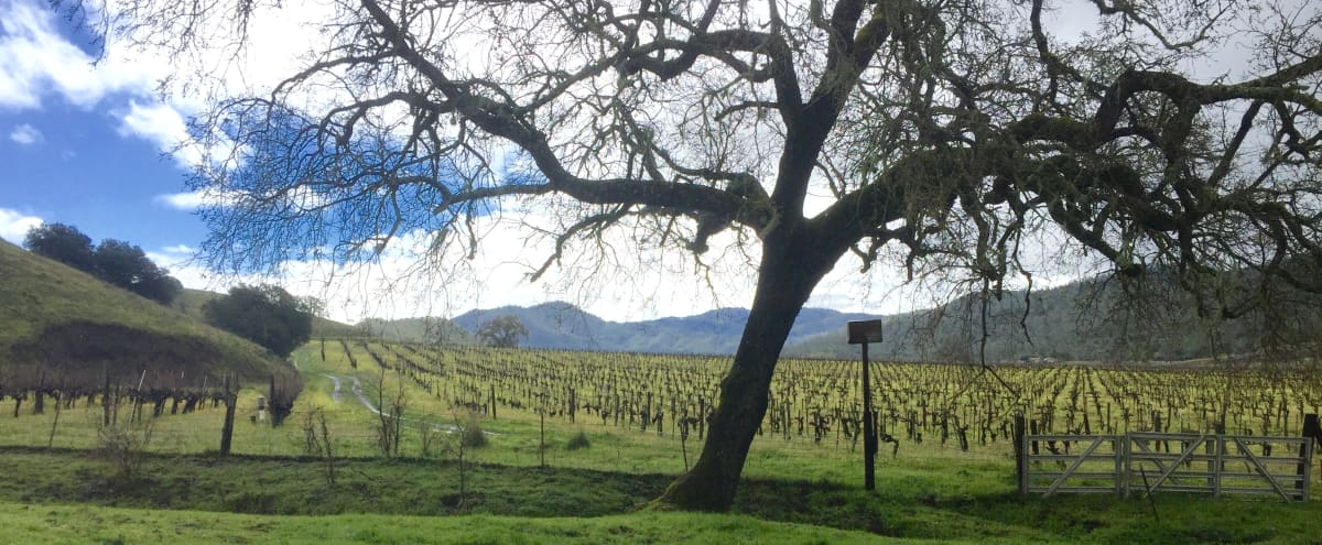 Remote and Private Napa Valley Ranch on 600 acres with Lodge and Commercial Kitchen in St. Helena Hero Image in undefined, St. Helena, CA