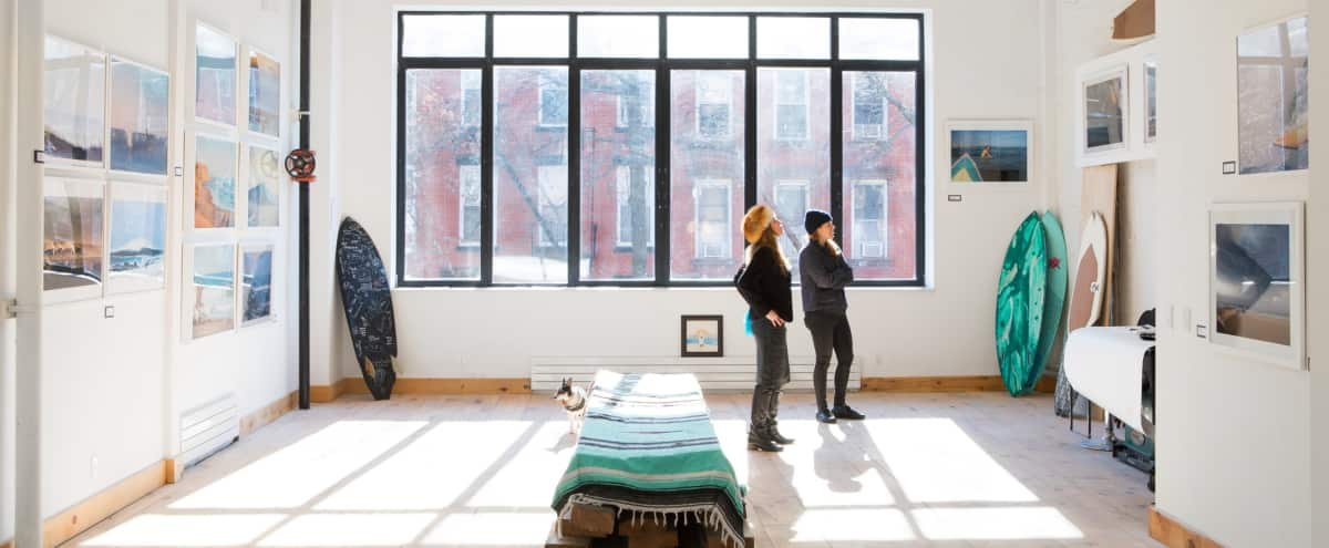 Spacious Sunlight  Studio with Balcony and Roof in Brooklyn Hero Image in Prospect Heights, Brooklyn, NY