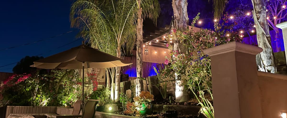 Tropical Palm Tree Zen Patio W/ Colored Lights in Quiet Residential Neighborhood in Woodland Hills Hero Image in Woodland Hills, Woodland Hills, CA