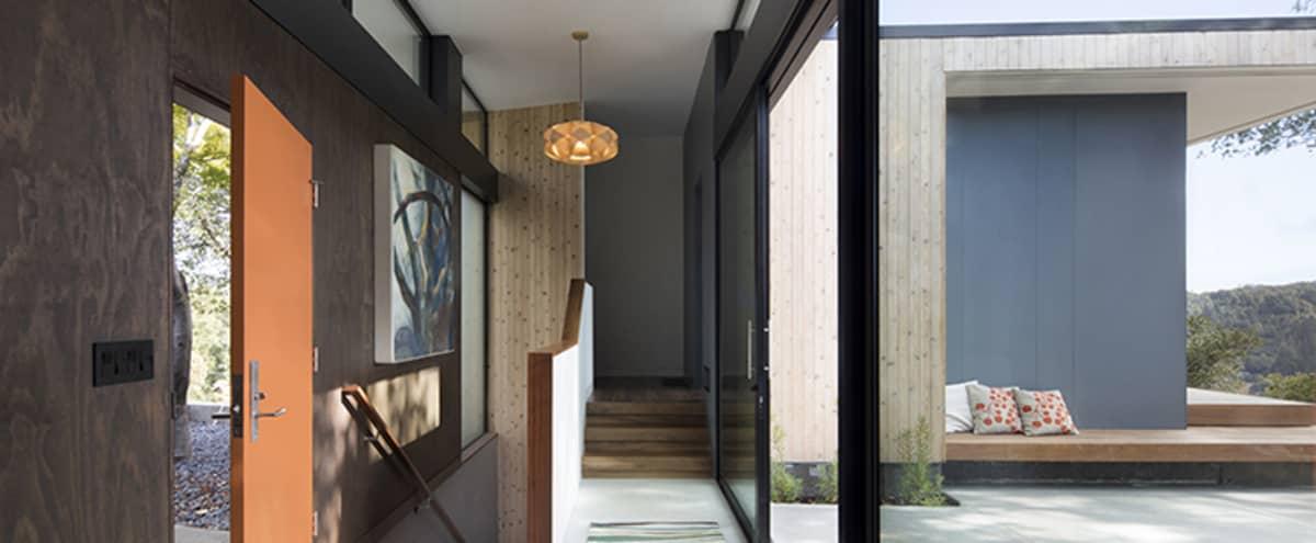 Bluebird House in San Rafael (P) in San Rafael Hero Image in undefined, San Rafael, CA
