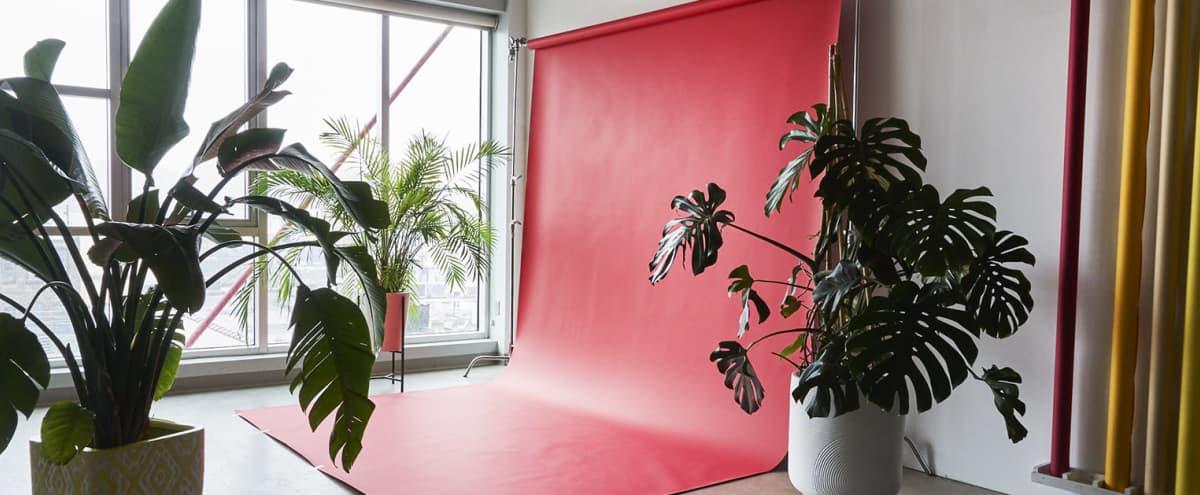 Matka: Lustro: Incredible Urban Jungle Photo Studio with Amazing Sunlight / Free Lighting Gear in Brooklyn Hero Image in East Williamsburg, Brooklyn, NY