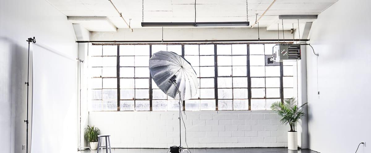 Bright Photo Studio in Brooklyn in Ridgewood Hero Image in Ridgewood, Ridgewood, NY