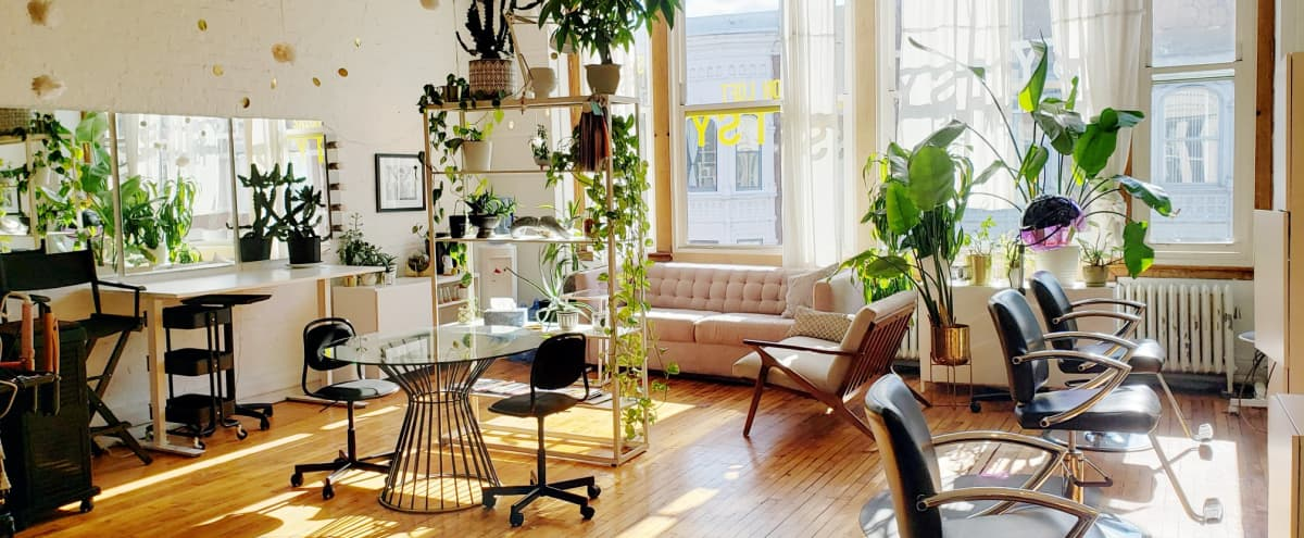 Spacious Salon Loft with Bright Natural Light & Tons of Plants in Chicago Hero Image in West Town, Chicago, IL
