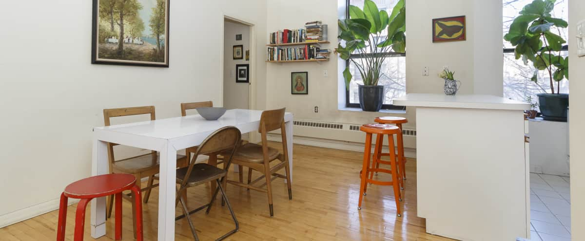 Light-Filled Prospect Heights Loft in Brooklyn Hero Image in Crown Heights, Brooklyn, NY