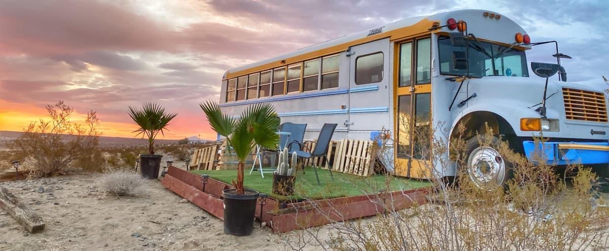 Unique Design School Bus Converted located in 100 acres in Joshua Tree Hero Image in undefined, Joshua Tree, CA