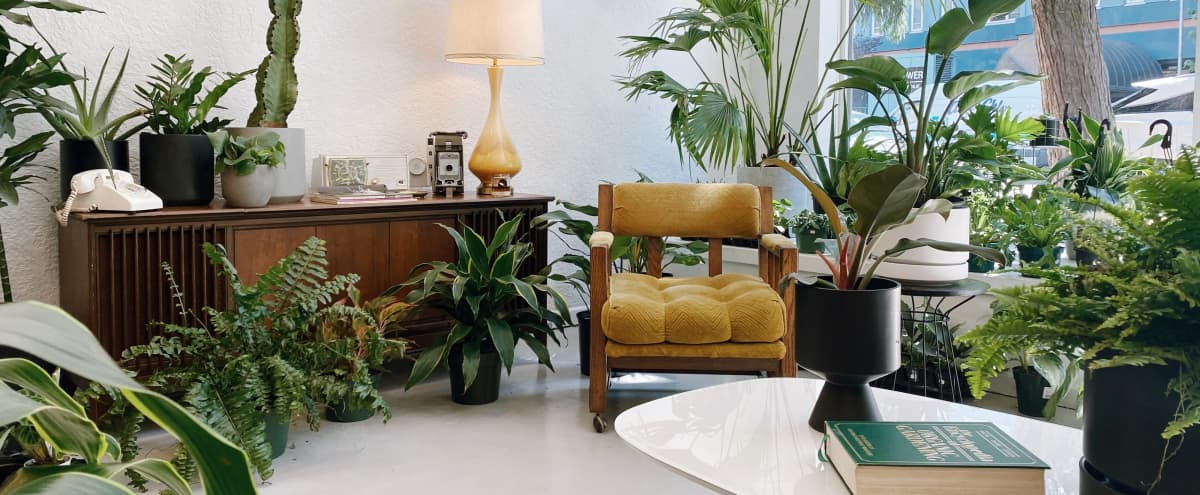Bright, Airy Plant Filled Shop + Creative Studio in Seattle Hero Image in Belltown, Seattle, WA