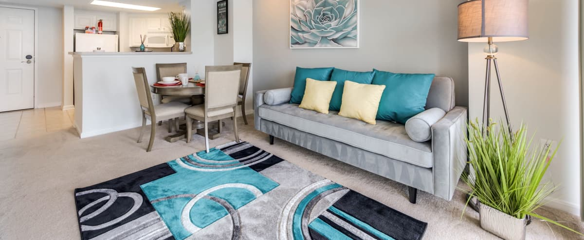 Comfortable Luxurious Mid Rise Apartment in Arlington in Arlington Hero Image in Virginia Square, Arlington, VA