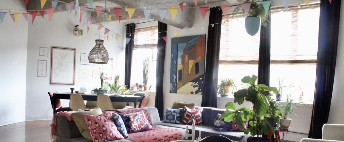 Large, Bright, and Colorful Loft with Southern Light in BROOKLYN Hero Image in Clinton Hill, BROOKLYN, NY