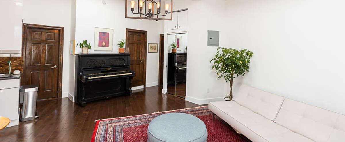 Isla Mome Studios: bright rooms for livestreams + photo & video shoots in Brooklyn Hero Image in Flatbush, Brooklyn, NY