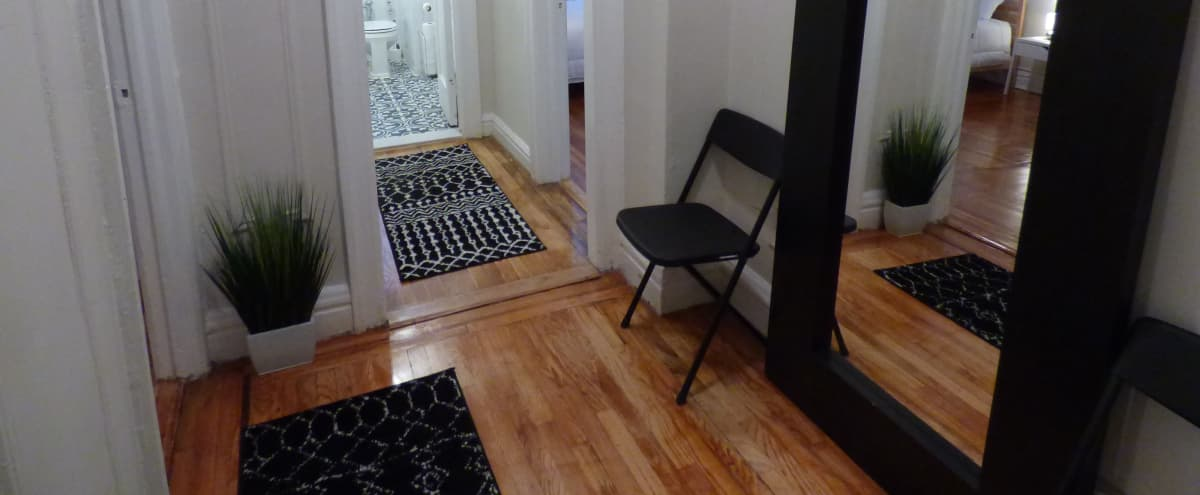 Modern, Sunny Apartment in Pelham Parkway, Bronx, NY in Bronx Hero Image in East Bronx, Bronx, NY