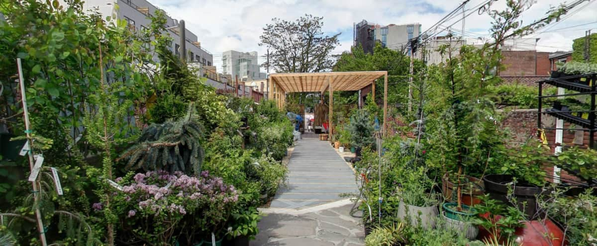 Large, Lush & Versatile Garden Space in Brooklyn Hero Image in Williamsburg, Brooklyn, NY