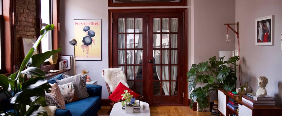 Historic Brooklyn Brownstone with Romantic Vibe in Brooklyn Hero Image in Bedford-Stuyvesant, Brooklyn, NY