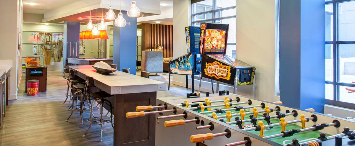 Open Game Room With PinBall/ Arcade Games, Shuffleboard and Wet Bar Perfect for Your Next Event! in Alexandria Hero Image in Potomac Yard, Alexandria, VA