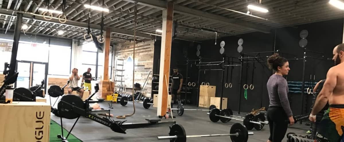 Spacious Brooklyn Gym in New York Hero Image in Greenpoint, New York, NY