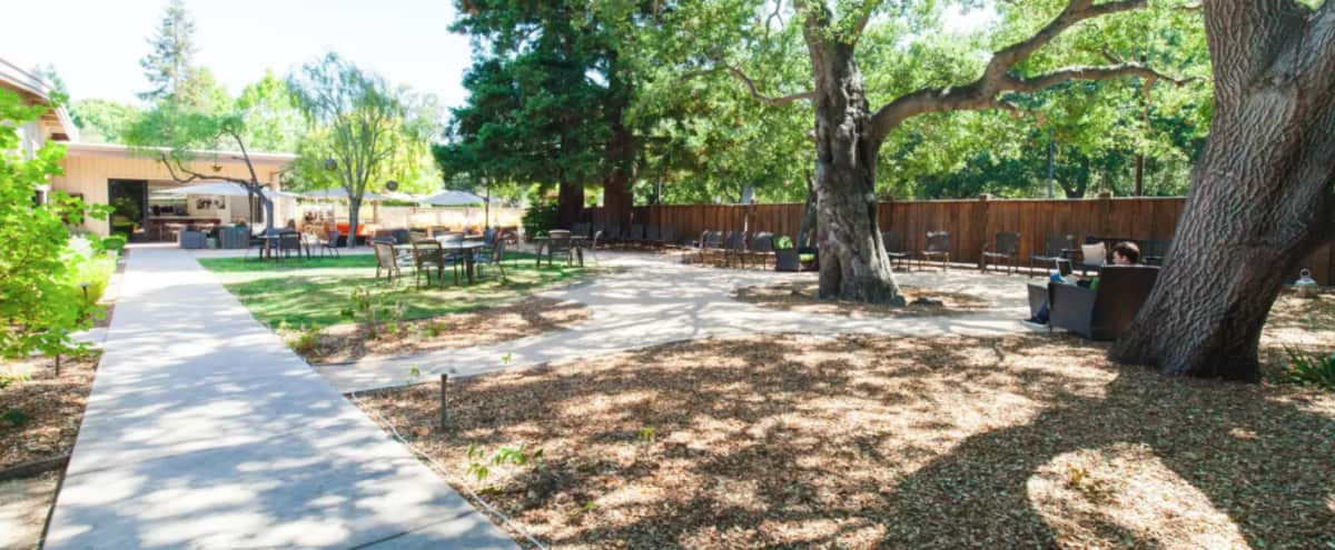 Outdoor Event Space Patio + Lawn Area Menlo Park in Menlo Park Hero Image in Linfield Oaks, Menlo Park, CA