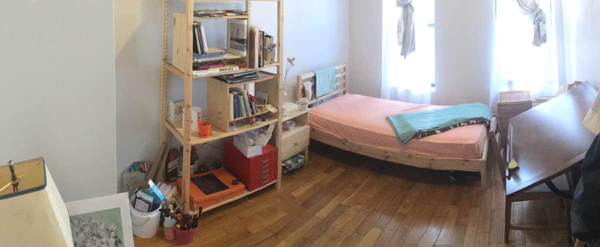 Bright Bushwick Bedroom in Brooklyn Hero Image in Bushwick, Brooklyn, NY