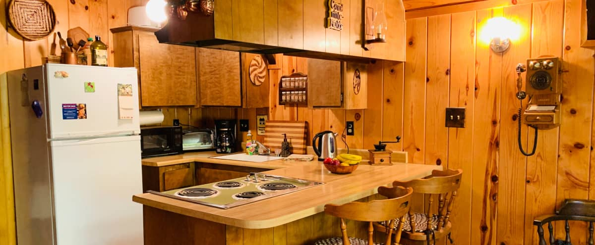 The Grooviest Cabin in Idyllwild! in Idyllwild - Pine Cove Hero Image in undefined, Idyllwild - Pine Cove, CA