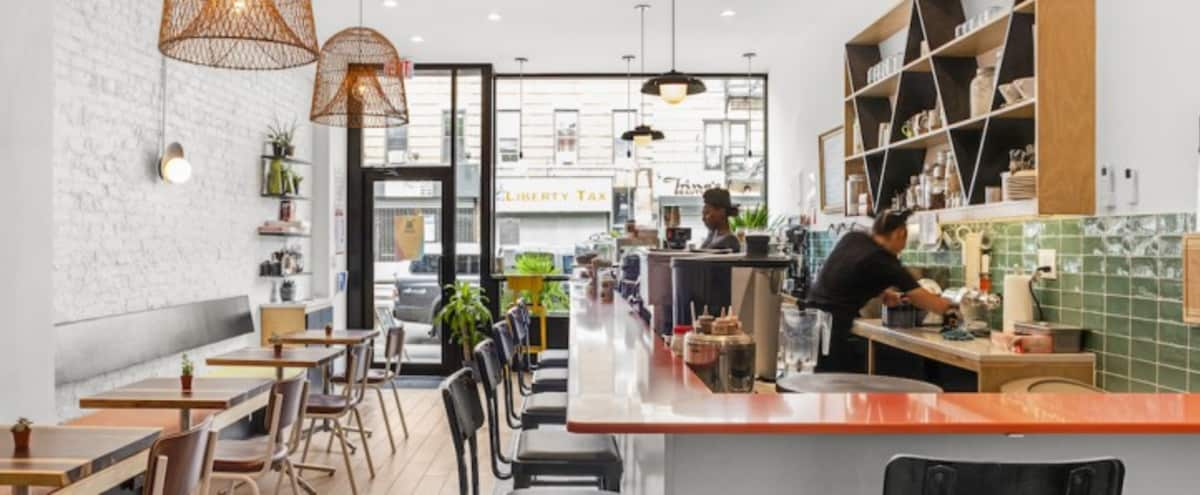 Weeksville / Crown Heights Chic Cafe & Bar in Brooklyn Hero Image in Crown Heights, Brooklyn, NY