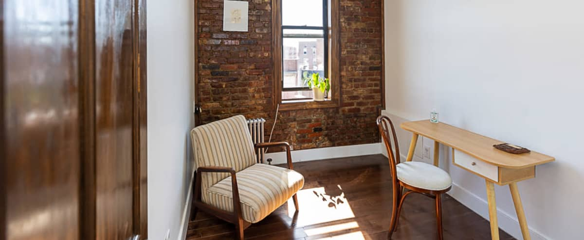 Isla Momé: therapy & wellness studio   meetings   virtual classroom   livestream in Brooklyn Hero Image in Flatbush, Brooklyn, NY