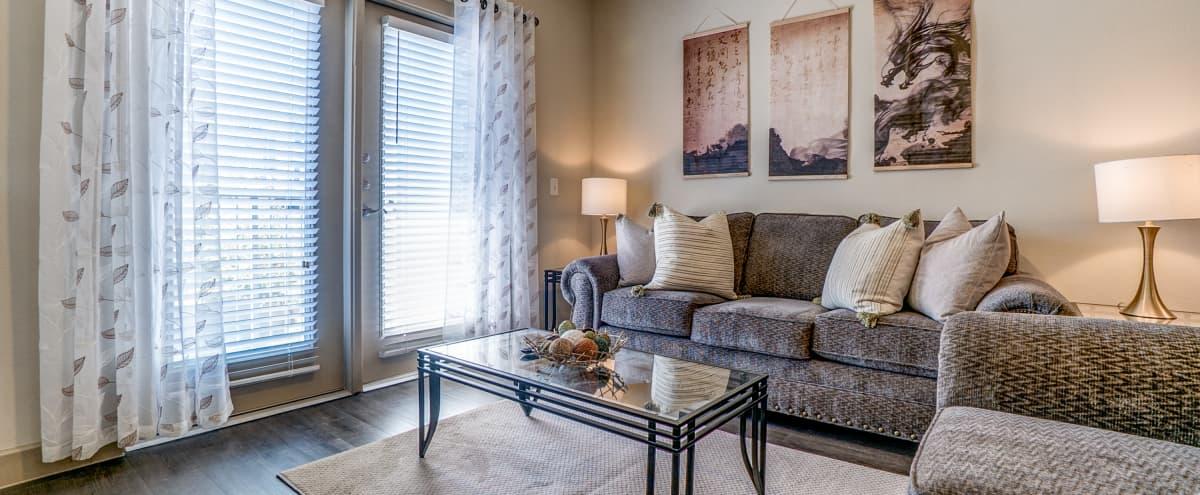 Spacious Zen Inspired Apartment in Richardson Hero Image in undefined, Richardson, TX