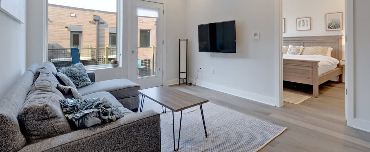 Minimalist Chic Modern East Austin Apartment w/ Beautiful Kitchen in Austin Hero Image in East Cesar Chavez, Austin, TX