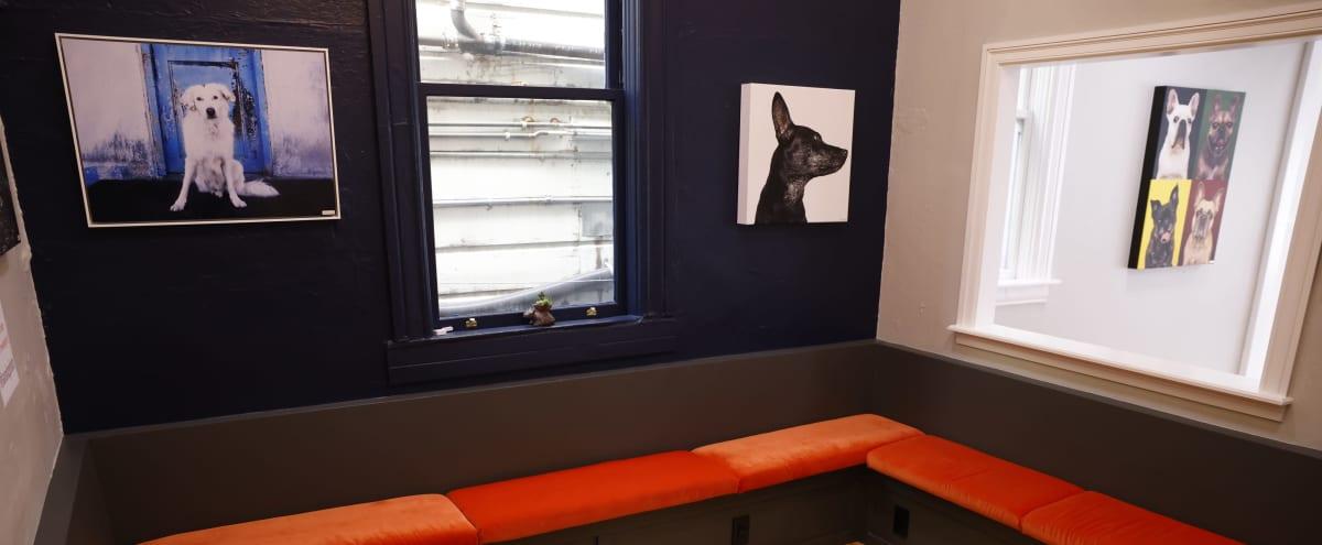 Bright & Open Neighborhood Studio/Gallery in San Francisco Hero Image in Bernal Heights, San Francisco, CA