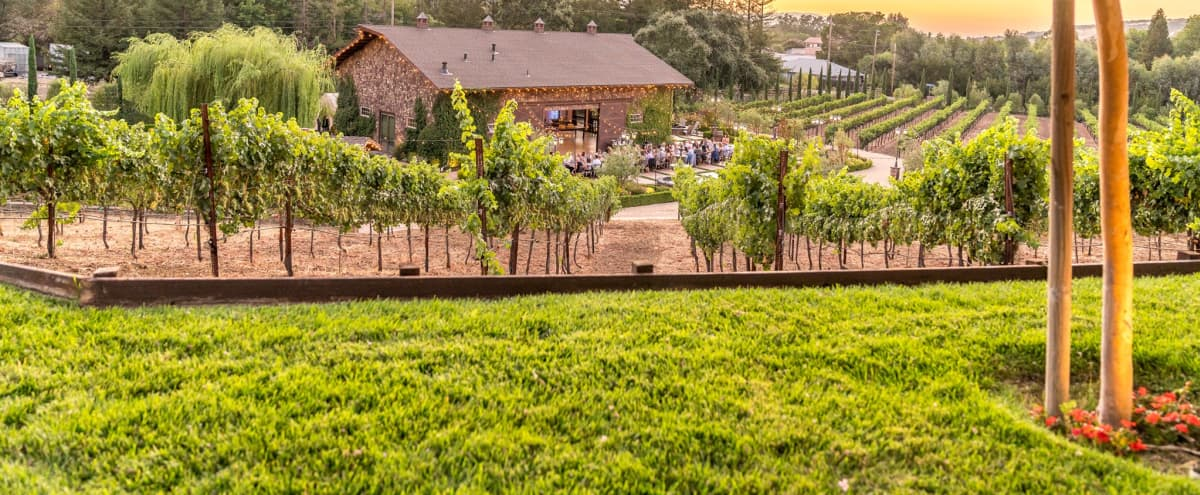 Winery Views with Rustic Barn in San Jose Hero Image in Almaden, San Jose, CA