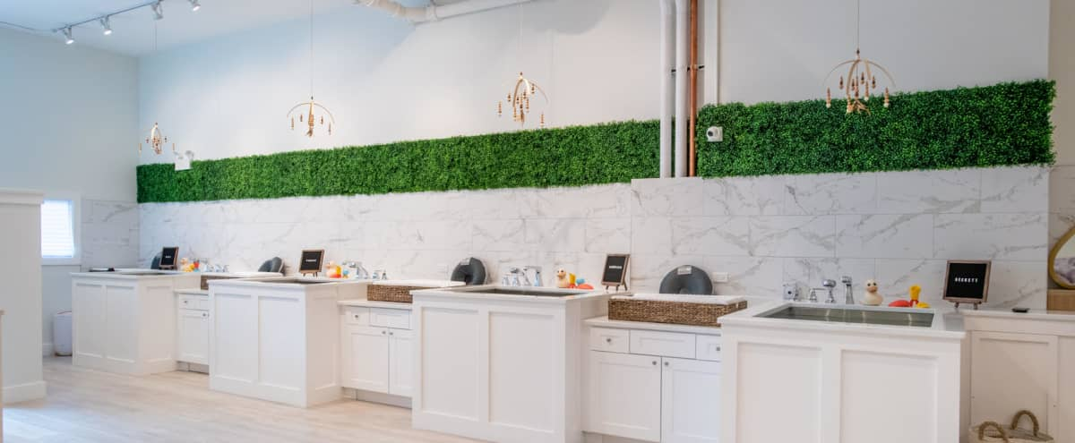 Bright, warm and inviting Bucktown wellness studio in Chicago Hero Image in Bucktown, Chicago, IL