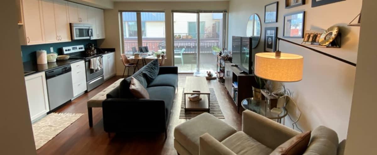 Urban 2nd Floor Studio with Patio in Seattle Hero Image in Green Lake, Seattle, WA