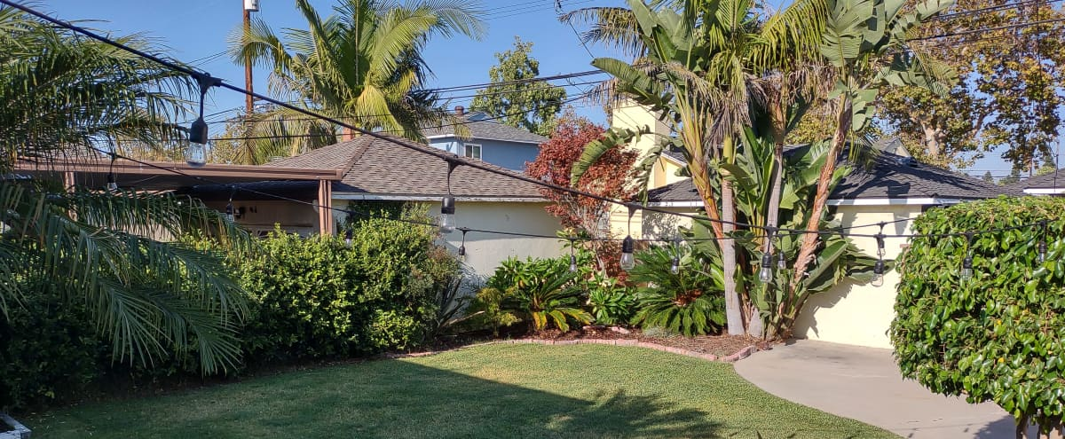 Spacious Tropical Vibe Backyard in Lakewood Hero Image in undefined, Lakewood, CA