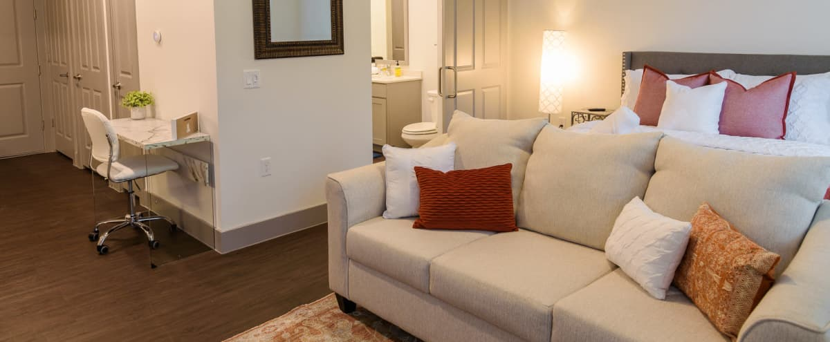 Sweet Suite w/ Pool View 8 min to Downtown in Austin Hero Image in Govalle, Austin, TX
