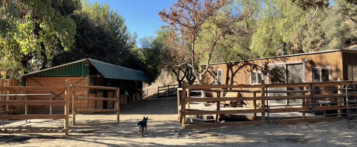 Mid Century Ranch in Malibu Canyon in Calabasas Hero Image in undefined, Calabasas, CA