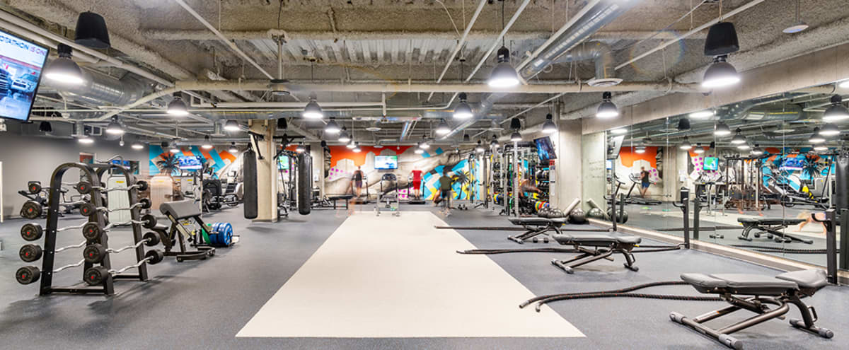 Spacious State-of-the-Art Gym for trainings, shoots, and more. in Irvine Hero Image in Irvine Business Complex, Irvine, CA