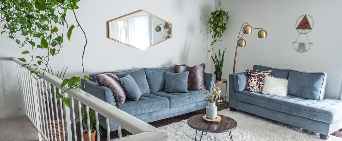 Spacious Mid Century Modern Apartment in SHERMAN OAKS Hero Image in Sherman Oaks, SHERMAN OAKS, CA
