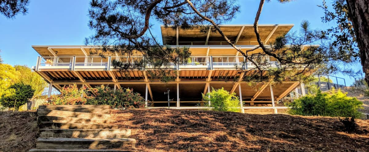 1963 Classic Mid-Century Modern Marvel - Case Study House in San Rafael Hero Image in undefined, San Rafael, CA