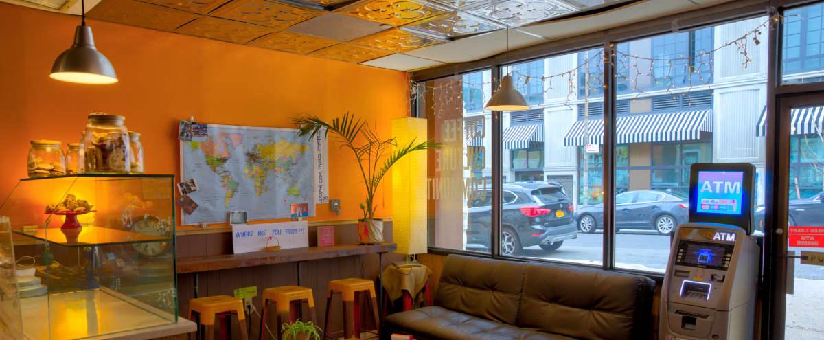 Cozy Coffee Shop in Long Island City in LongIslandCity Hero Image in Dutch Kills, LongIslandCity, NY