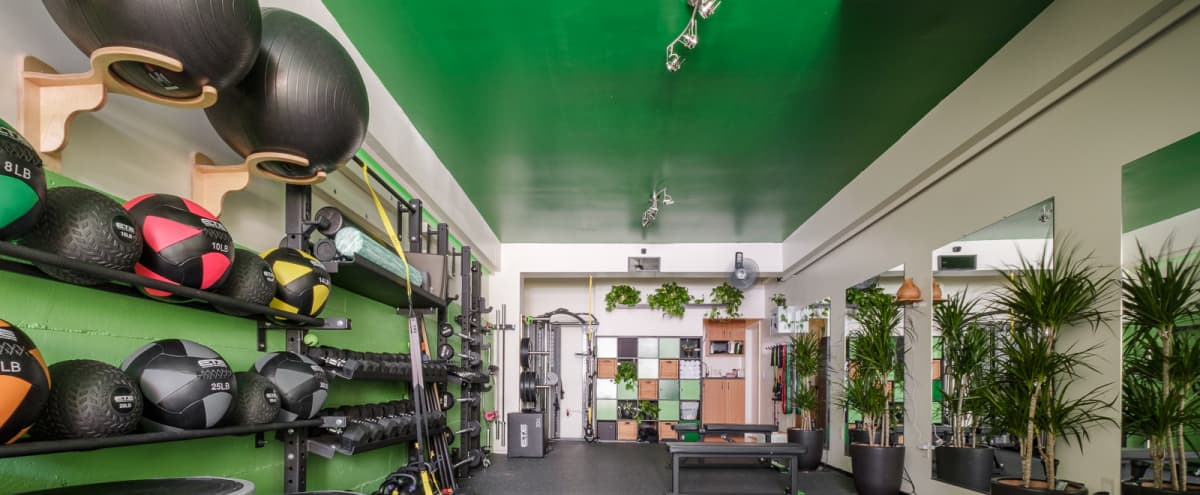 Lower Pacific Heights Fitness Studio with Solo Access in San Francisco Hero Image in Western Addition, San Francisco, CA