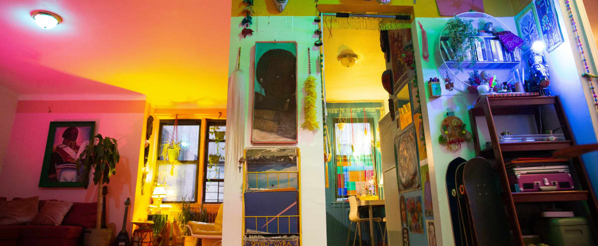 Eclectic Caribbean Inspired Apartment in Flatbush in brooklyn Hero Image in Flatbush - Ditmas Park, brooklyn, NY