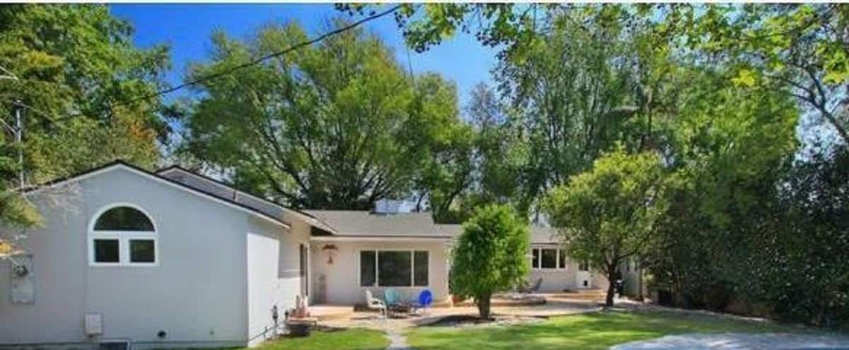 Suburban, Americana with large backyard and pool in Valley Glen Hero Image in North Hollywood, Valley Glen, CA