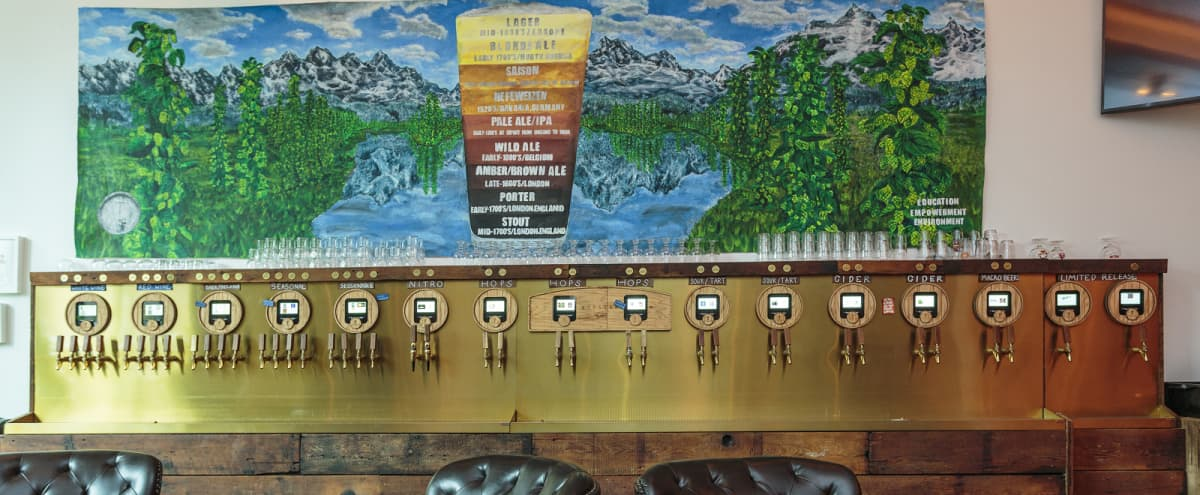 Self-Pour Tasting Bar in Wicker Park   Available for Weekday Projects in Chicago Hero Image in Wicker Park, Chicago, IL