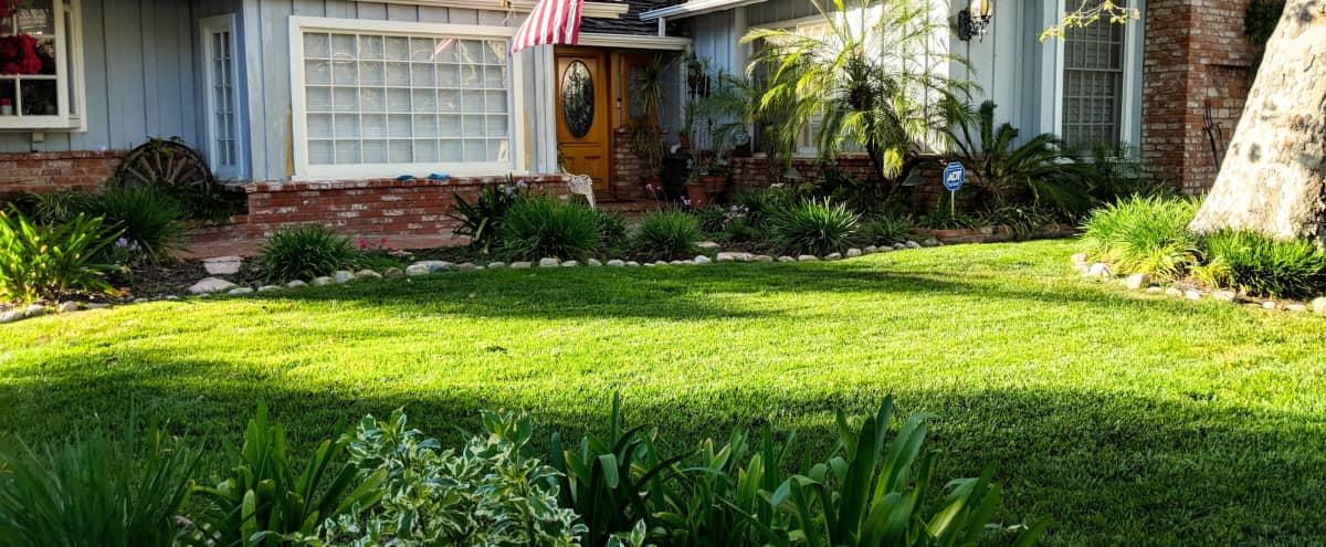 Spacious Open Ranch Home with Pool & Large Backyard in Tarzana Hero Image in Tarzana, Tarzana, CA