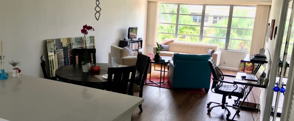 Very bright one bedroom apartment home with lush green garden view in Hallandale Beach Hero Image in undefined, Hallandale Beach, FL
