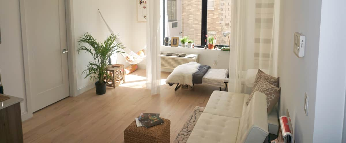 Modern Minimalistic Urban Jungle Studio Like Space in Brooklyn Hero Image in Bedford-Stuyvesant, Brooklyn, NY
